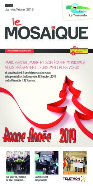 thumbnail of BAT 3 – Mosaique Janv_fev 2019