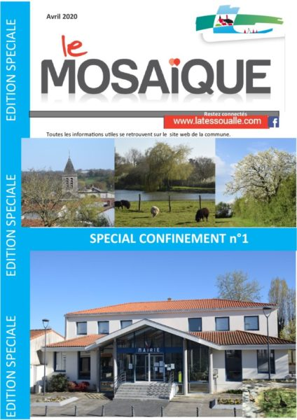 thumbnail of Mosaique edition speciale